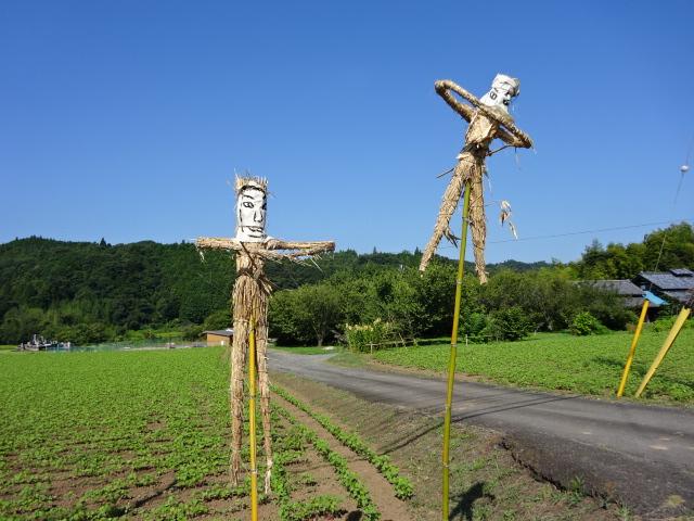 新型コロナウィルス沈静の願いを込めて、常陸太田市上宮河内町の有志が作成した大助人形が、金砂交流館に来る途中の道路脇に、飾ってあります。2体づつ3カ所に飾ってありますので、ぜひ探してみて下さい。